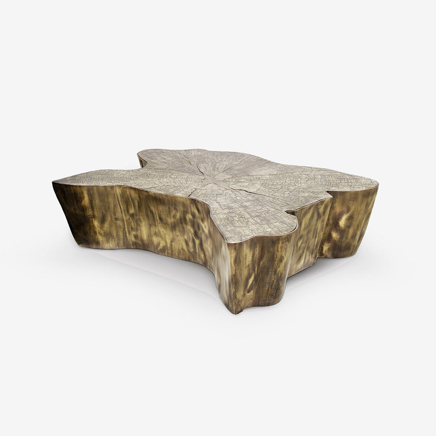 Eden Coffee Table Patina