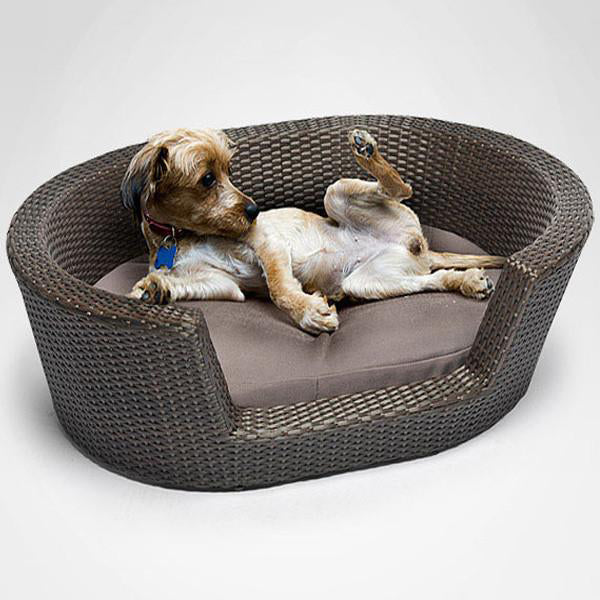Outdoor Wicker Dog Basket Vintage