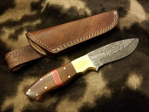 BushCraft Damascus Knife with Brass Guard & Walnut Wood With Red Spacer Scale - SUSA KNIVES