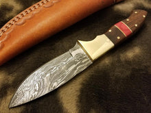 Load image into Gallery viewer, BushCraft Damascus Knife with Brass Guard & Walnut Wood With Red Spacer Scale - SUSA KNIVES