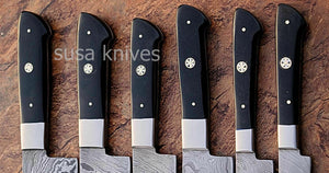 CUSTOM MADE DAMASCUS BLADE 6Pcs. CHEF/KITCHEN KNIVES SET - SUSA KNIVES