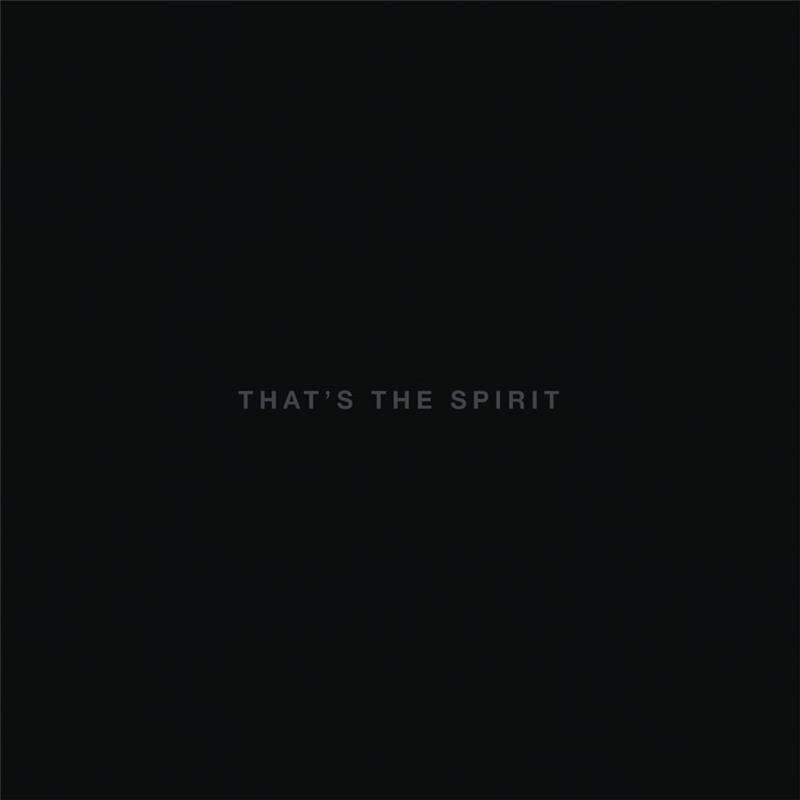 Bring Me The Horizon - Thats The Spirit (jewel case) - CD - New