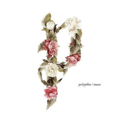 Polyphia - Muse - CD - New