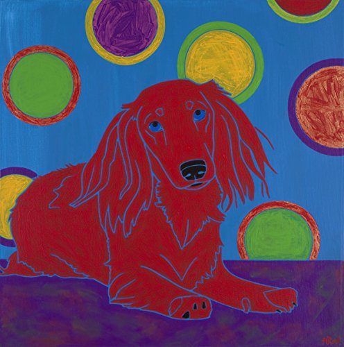 Long Haired Dachshund - Dachshund Art Print - 11