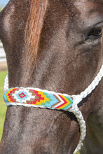 Load image into Gallery viewer, Professional's Choice Cowboy Braided Halter with 10' Lead