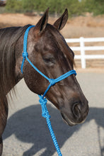 Load image into Gallery viewer, Professional's Choice Ranch Hand Halter & Lead