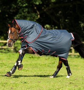 Horseware Amigo® Bravo 12 Plus (250g Medium) Winter Blanket