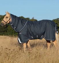 Load image into Gallery viewer, Horseware Amigo® Bravo 12 Plus (400g Heavy) Winter Blanket