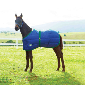 Weatherbeeta 420D Standard Neck Foal Medium Winter Blanket