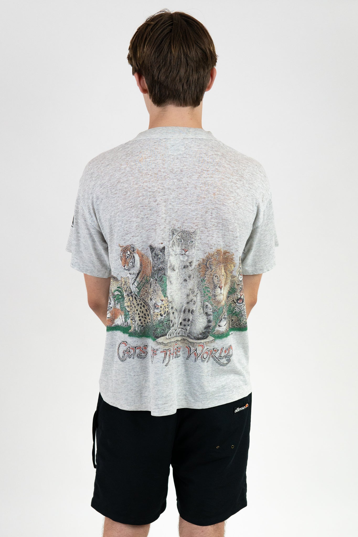 Vintage Cats Of The World Tee / Size S