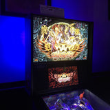 Pinball Backbox Cabinet Lighting Kit- SAM/Whitestar