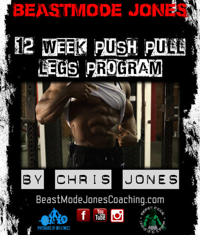 12 Week Push, Pull, Legs Program (with form tutorial vids)