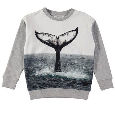 MOLO Morell Sweat shirt Whale Tail-Sweat shirt-MOLO-Billie & Axel, Montreal, Canada & USA