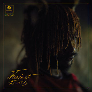 Thundercat - It Is What It Is