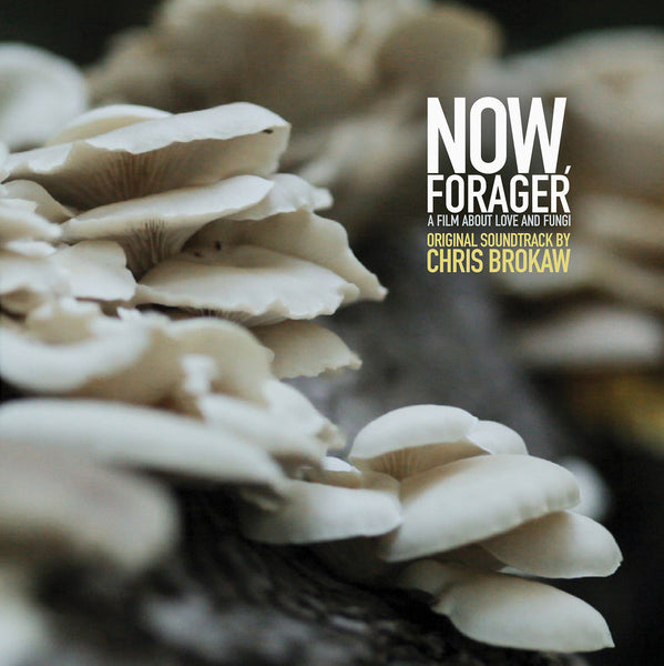 Chris Brokaw - Now Forager-LP-South