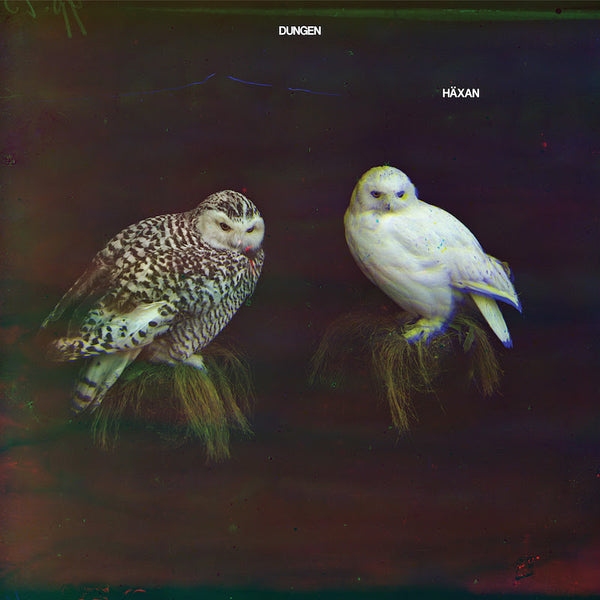 Dungen - Haxan-LP-South