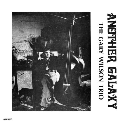 Gary Wilson - Another Galaxy-LP-South