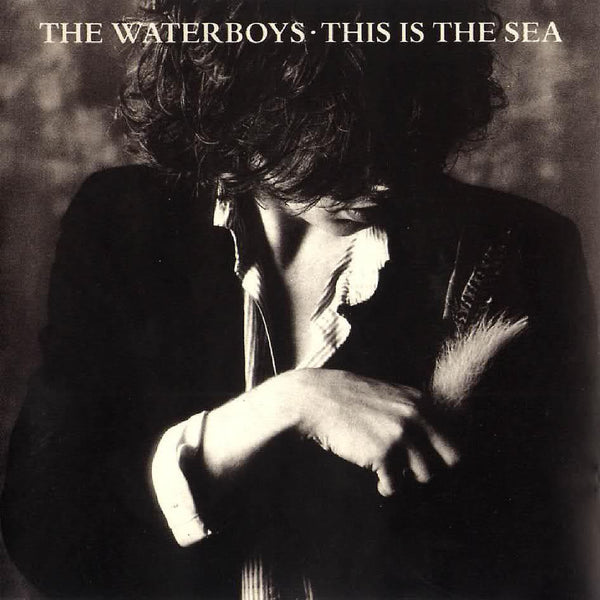 The Waterboys - This Is The Sea-Vinyl LP-South