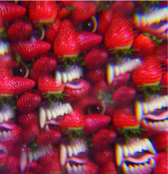 Thee Oh Sees - Floating Coffin LP-Vinyl LP-South