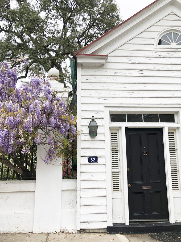 Wisteria Hysteria Meeting Street Charleston South Carolina photo by Erika Firm