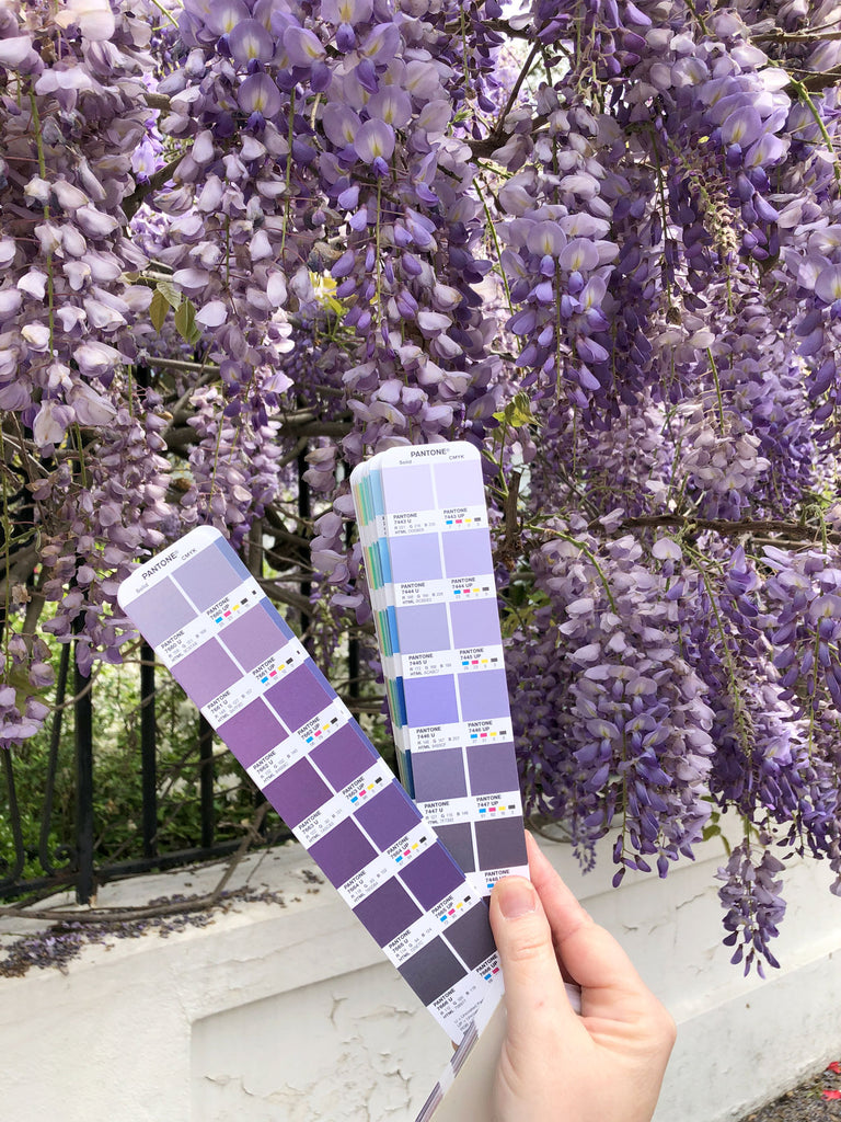 Pantone swatch book purple violet wisteria photo by Erika Firm