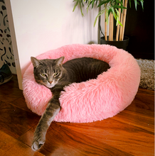 Load image into Gallery viewer, cat bed | dog bed | dog beds for small dogs