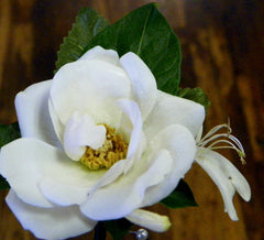 Rose Boutonniere with Forest Accents