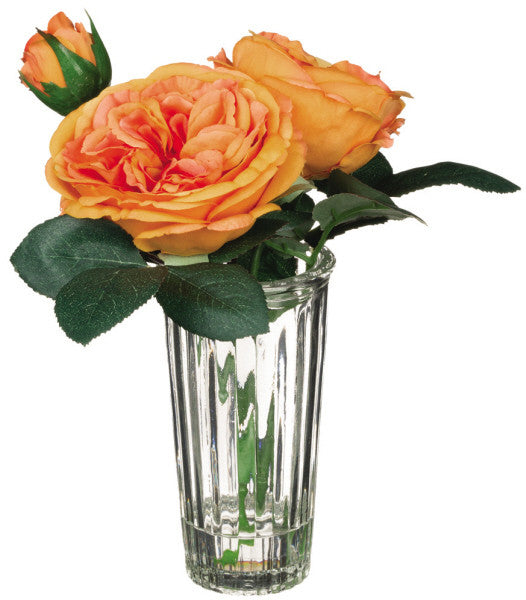 Everlasting Orange Rose Vase