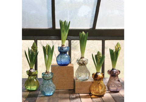 Bulb Vase - Recycled - Clear