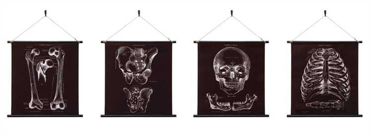 Canvas Skeleton Wall Banner