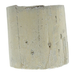 Eucalyptus Cast Cement Container - Small