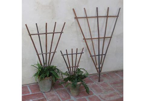 Staked Twig Trellis - Large
