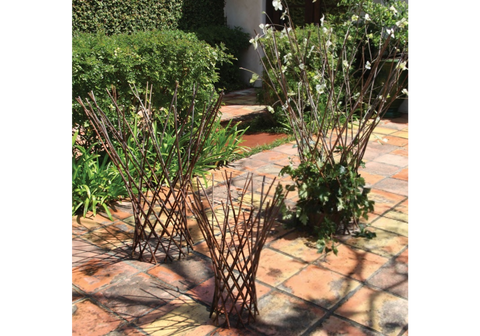 Flared Twig Trellis - Small + Medium