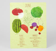 Perpetual Harvest - What to plant and enjoy, month by month by Claudia Pearson
