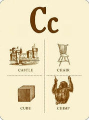 Pictorial Webster's Wall Cards: Icons & Curiosities from A to Z
