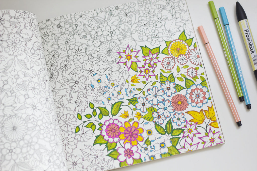 Secret Garden An Inky Treasure Hunt And Coloring Book By Johanna