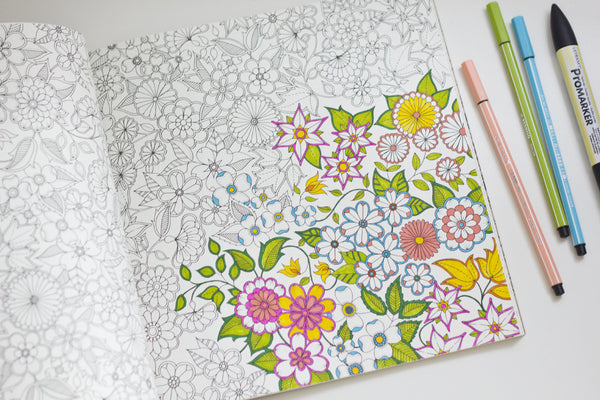 Secret Garden An Inky Treasure Hunt And Coloring Book By Johanna Basf BRIARWOOD