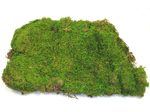 8 Oz Bulk Preserved Sheet Moss