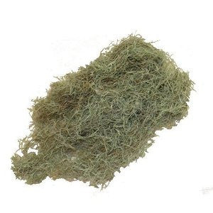 8 Oz Bulk Preserved Spanish Moss