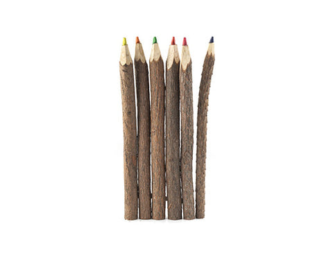 Twig Colored Pencil, Set Of 6