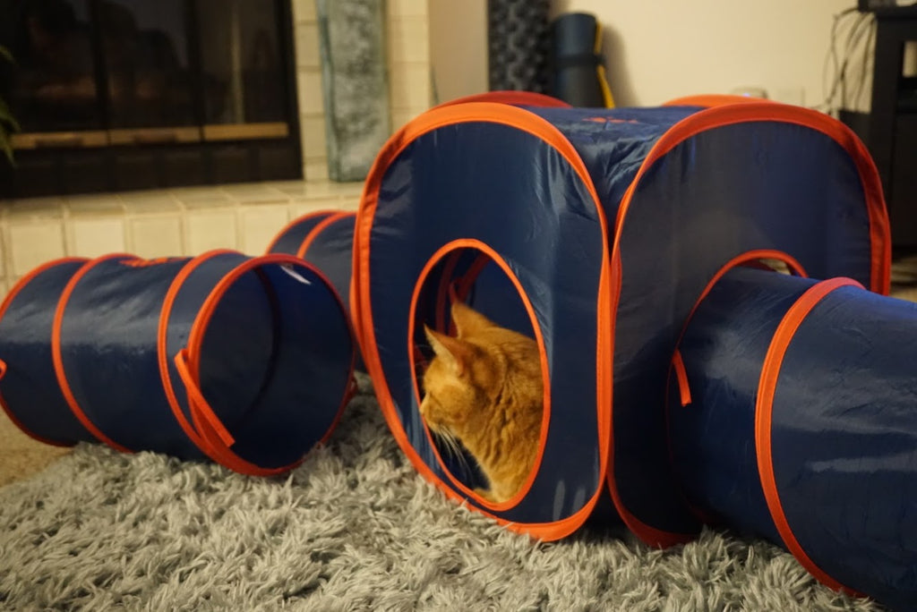 Paws and Pups Cat Home Collapsible House Cubes Tunnel Tassels (1 Cube) - Gaucho Goods