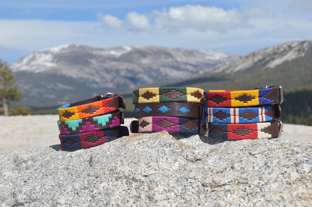 Leather Dog Collars on Rock