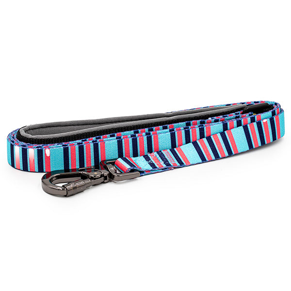 Paws and Pups Durable 6ft Nylon Dog Leash with neoprene padded handle - Baby Blue/Pink Stripes - Gaucho Goods
