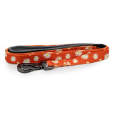 Paws and Pups Durable 6ft Nylon Dog Leash with neoprene padded handle - Orange Daisy - Gaucho Goods