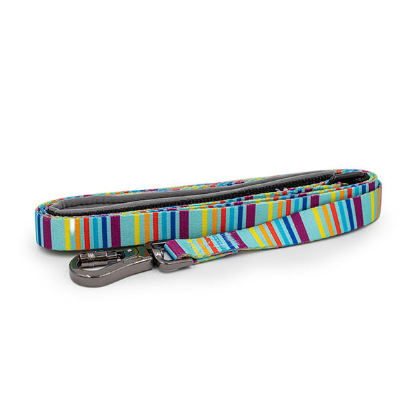 Paws and Pups Durable 6ft Nylon Dog Leash with neoprene padded handle - Rainbow Stripes - Gaucho Goods