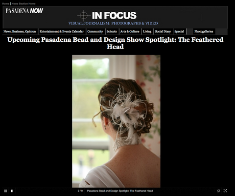 Pasadena Now In Focus Spotlight The Feathered Head & Andie Cohen Healy