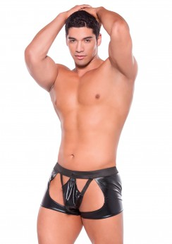 Zeus Wetlook-Chaps with thong One -size.