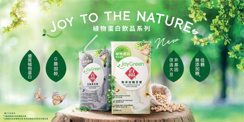 PAK FOOK® JOY GREEN™ No Added Sugar Soya Drink 6 x 250mL
