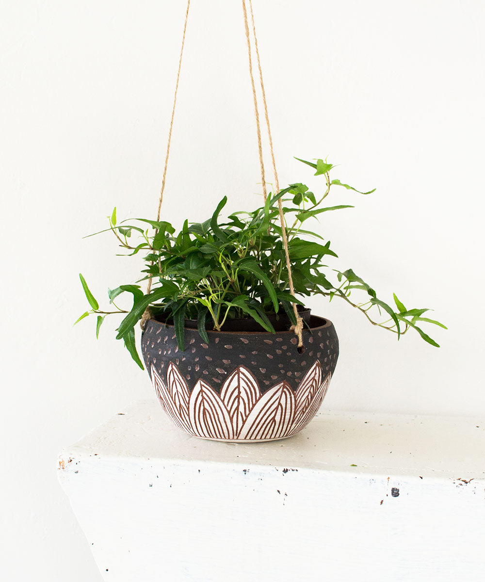 Evermore Hanging Planter