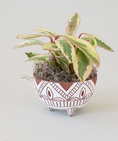 Footed Terra Planter - Sister Golden